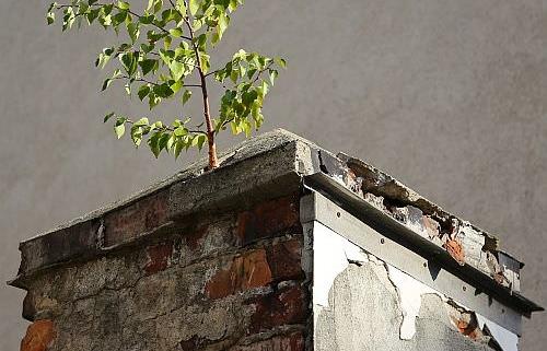 Bauschäden und deren Ursachen